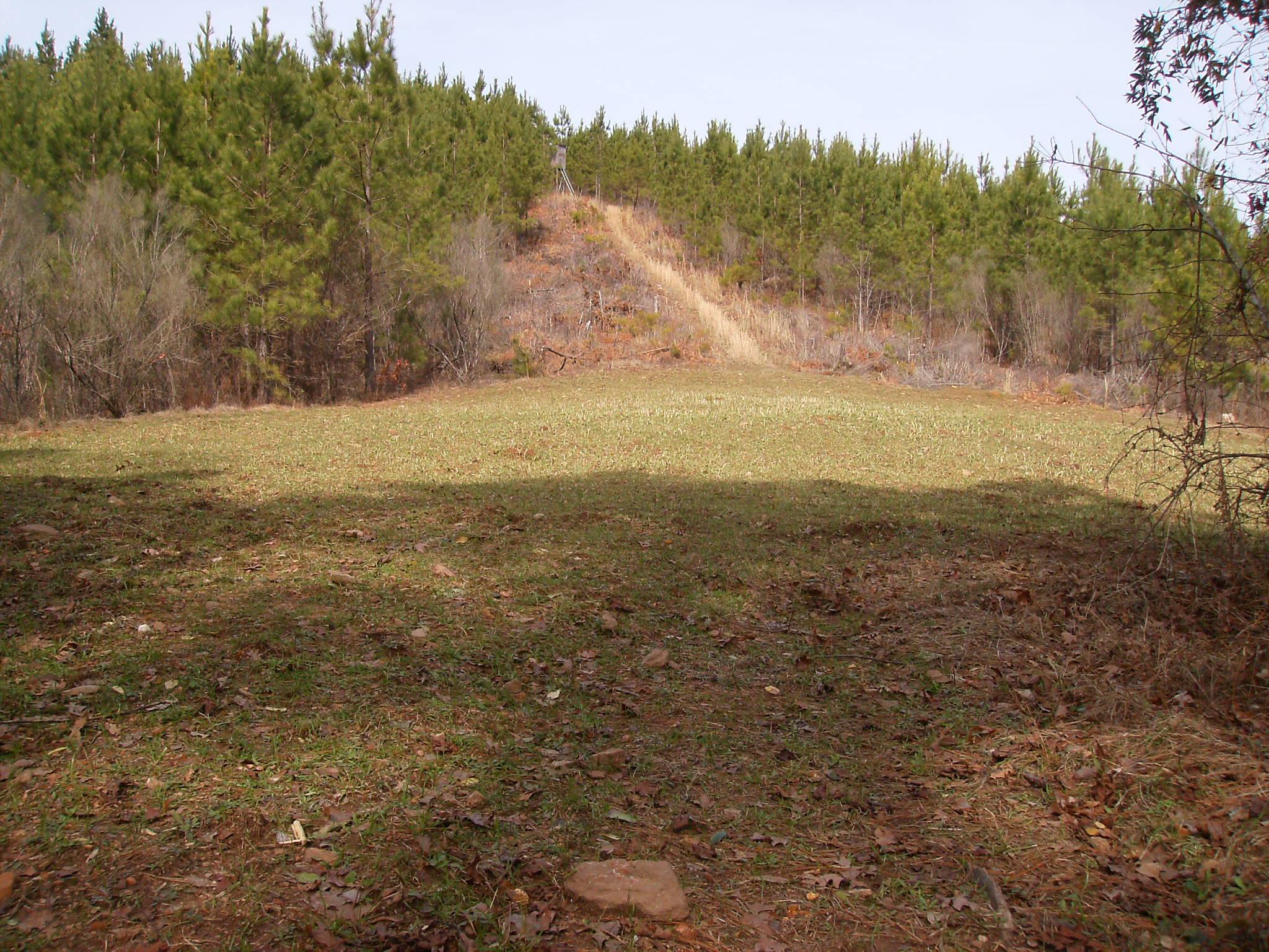 Southern Pines Hunting Club